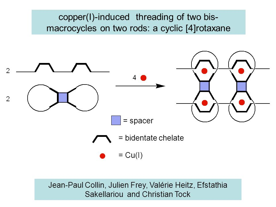 copper(I)-induced threading of two bis-macrocycles on two rods: a cyclic [4]rotaxane
